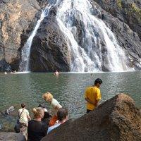 2012 год. Индия. Водопад :: Владимир Шибинский