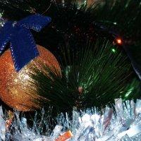 С наступающим Новым Годом поздравляю всех! :: Александр Лейкум