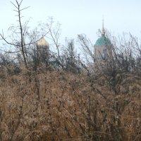 Осень в Колюпаново :: Светлана Воронкова