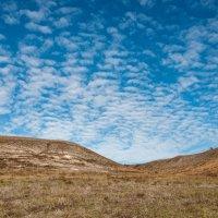 Чудное небо :: Елена Р.