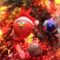 Angry birdy ball :: Станислав Соколов