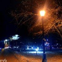 Ночной парк :: Yuri Zubarev