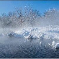 Морозное дыхание :: Анатолий 71