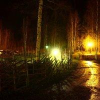 Финляндия :: Жанна Турлаева