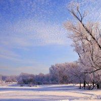 Зимушка-зима :: Евгений Юрков
