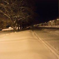 Снежок :: Дамир Белоколенко