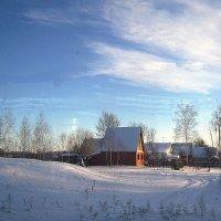 Зима в Подмосковье :: толик токарев