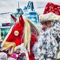 ...2026 год: год огненной лошади...что она делает в 2014-ом?..)) :: Сергей Андрейчук