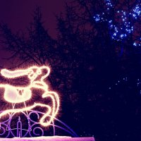 Рождественский Олень :: Анастасия Вадова