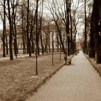 Зимний парк :: wert wert