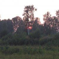 Летний закат. :: Юлия Русских