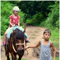 я-маленькая лошадка,и мне живется несладко.. :: Лариса Красноперова