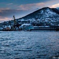 Авачинская бухта :: Anna Gubina