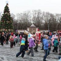 Новогодняя Ёлка в Сокольниках :: Любовь Бутакова