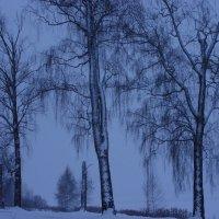 зимний пейзаж в подмосковье :: Ирина Гракова