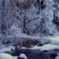 Снежное царство.. :: ФотоЛюбка *