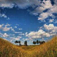 Улыбка природы :: Владимир Макаров