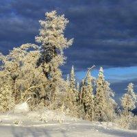 Сегодня солнечно и морозно :: Вячеслав Овчинников