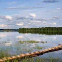 Озеро :: Михаил Паневин