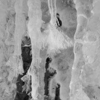 зимние гирлянды :: Наталья Ерёменко