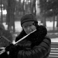 Уличный музыкант. :: ФотоЛюбка *
