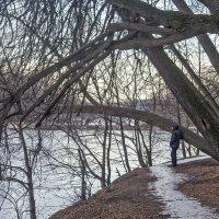 Зима в старом парке. :: Екатерина Рябинина