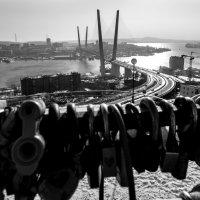 вид на бухту золотой рог :: Дмитрий Касай