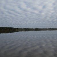 Озеро Белое. Сентябрь. :: Eule!