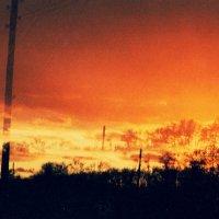 Зажигай солнце, зажигай небо :: Лиса Алиса