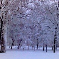 Парк в Самаре :: Наталья Иванченко