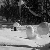 Снежные фигуры. :: Валерий Молоток