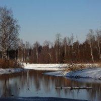 речка Тёплая :: sv.kaschuk