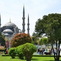 Голубая мечеть :: Valeriy(Валерий) Сергиенко