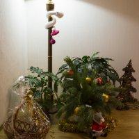 Новогодний уголок :: Николай Николенко
