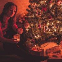 New Year :: Olga Starling