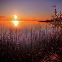 Туманный рассвет. :: Алексей Хаустов