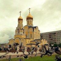 Храм Рождества Христова. :: Николай Кондаков