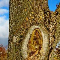 Причуды природы 2 :: Валерий Тумбочкин