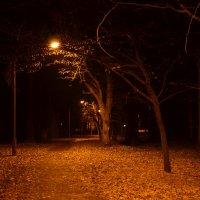 Осенний парк :: Татьяна Расторгуева