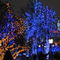 Счастливого Нового Года, Москва ! :: Евгения Михайлова