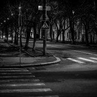 тишина :: MOZART ____