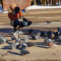 Фотограф и голуби :: Олег Козлов