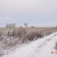 Первый снег :: Михаил Б