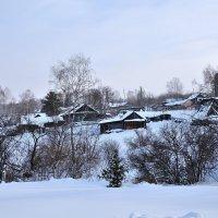 Деревенская зимняя зарисовка. :: Андрей В.
