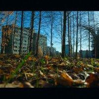 завтра пойдет снег :: Юрий ефимов