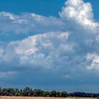 Буря ... скоро грянет буря! :: Николай Глазьев