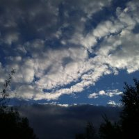 Вечернее небо :: Ирина Гангало