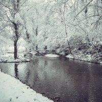 Первый снег :: Оля К
