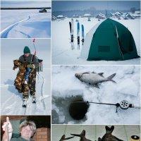 Зимняя рыбалка на оз. Граничном :: Михаил Паневин