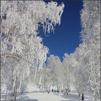 Берендеево царство :: Наталья Юрова